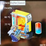 pantalla_biomassa_efasol